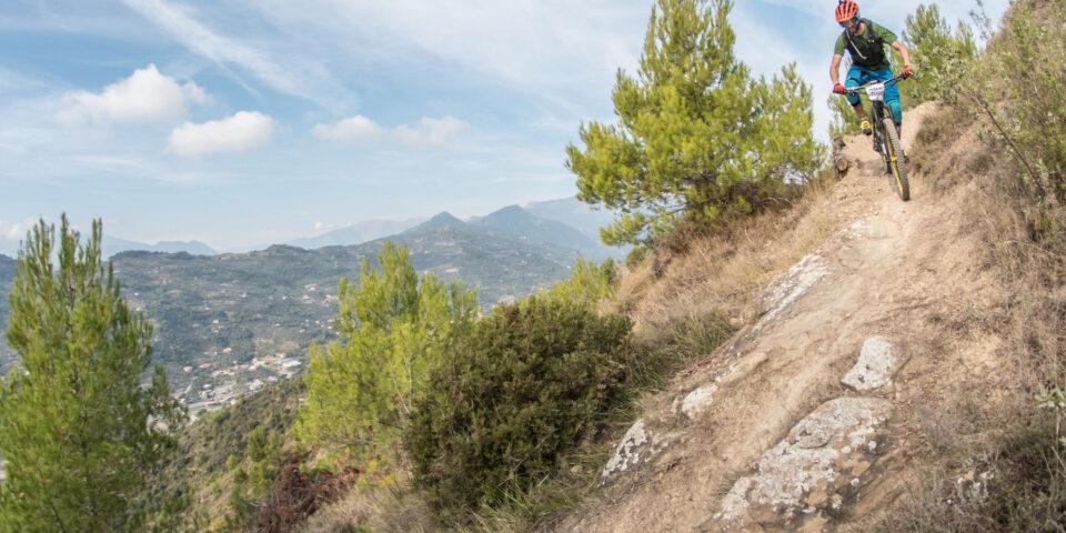 RWTL-Liguria-6-Mozaic-Big